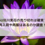 GU蜷川実花の売り切れは確実?再入荷や再販はあるのか調査!